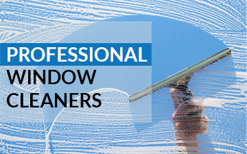 window-cleaners